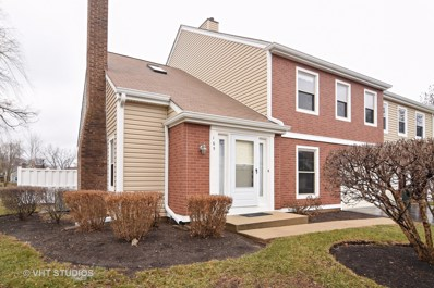 165 S Stonington Drive, Palatine, IL 60074 - MLS#: 09829776