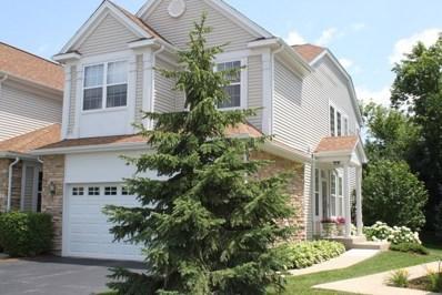 9 Kelsey Court, Algonquin, IL 60102 - MLS#: 09830198