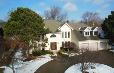 22W562  Glen Court, Medinah, IL 60157 - #: 09830475