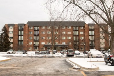 4711 Saint Joseph Creek Road UNIT 4I, Lisle, IL 60532 - MLS#: 09830856