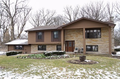 2213 Cardinal Court UNIT 2213, Schaumburg, IL 60194 - MLS#: 09831275