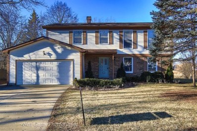 687 S Brentwood Drive, Crystal Lake, IL 60014 - MLS#: 09831364