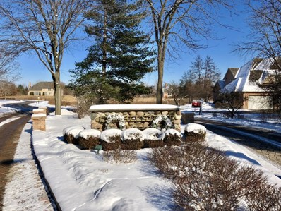 Lot 29  Rosehedge Drive, Long Grove, IL 60047 - MLS#: 09831862