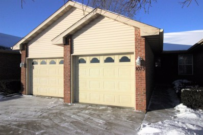 1073 Lincoln Drive UNIT 0, Manteno, IL 60950 - MLS#: 09833076