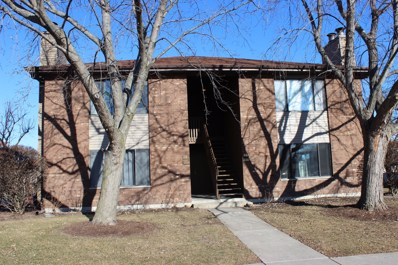 1080 Kane Street UNIT 1080, South Elgin, IL 60177 - MLS#: 09833119