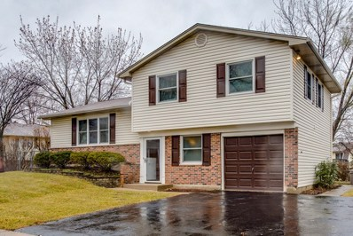 1400 Carr Court, Elk Grove Village, IL 60007 - #: 09833221