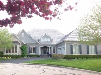 6303 Holly Road, Libertyville, IL 60048 - MLS#: 09833730