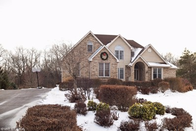 7209 DEERWOOD Trail, Mchenry, IL 60050 - #: 09833936