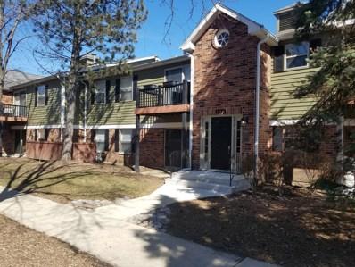 1573 Raymond Drive UNIT 104, Naperville, IL 60563 - MLS#: 09834102
