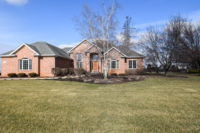 17401 S Honora Drive, Plainfield, IL 60586 - MLS#: 09834528
