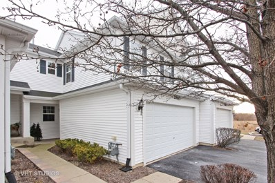 2860 Glacier Way UNIT E, Wauconda, IL 60084 - MLS#: 09835053