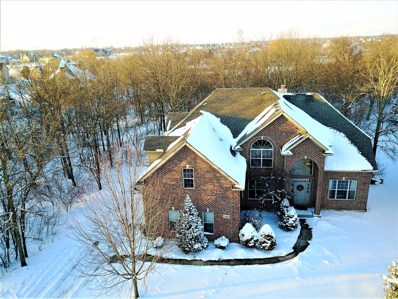 26600 S Overland Drive, Channahon, IL 60410 - #: 09835538