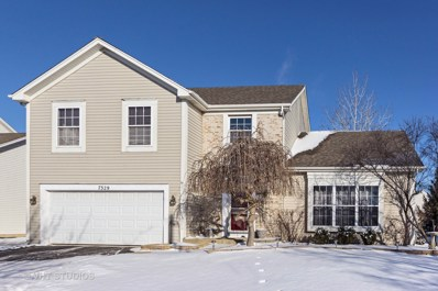 7329 Atkinson Circle, Plainfield, IL 60586 - MLS#: 09835668