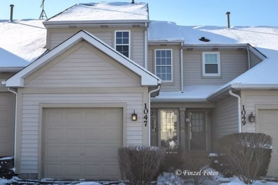 1047 Horizon Ridge, Lake In The Hills, IL 60156 - MLS#: 09836856