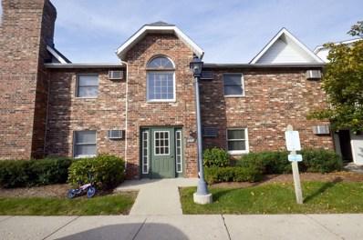 4407 W Shamrock Lane UNIT 1B, Mchenry, IL 60050 - MLS#: 09837880