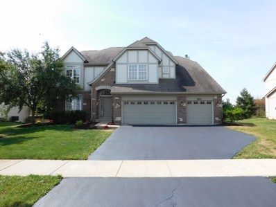 26311 MAPLEVIEW Drive, Plainfield, IL 60585 - MLS#: 09837980