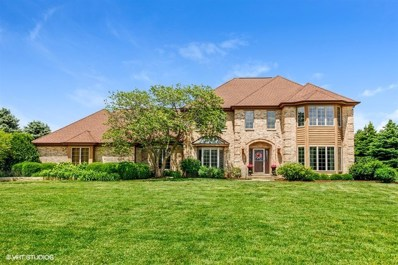 24500 W Emyvale Court, Plainfield, IL 60586 - MLS#: 09838057