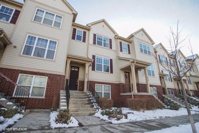 211 Wildflower Street, Des Plaines, IL 60016 - MLS#: 09838237