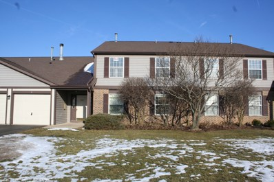 229 Brett Circle UNIT C, Wauconda, IL 60084 - MLS#: 09838460