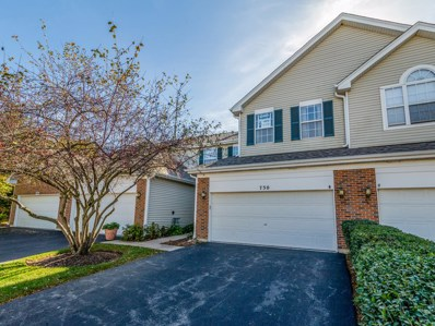 730 Timothy Court, East Dundee, IL 60118 - MLS#: 09839449