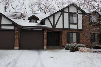 11101 Cottonwood Drive UNIT A, Palos Hills, IL 60465 - MLS#: 09840208