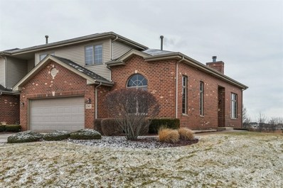 17997 Upland Drive, Tinley Park, IL 60487 - MLS#: 09840635