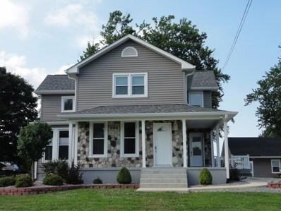 595 E Concord Street, Sheldon, IL 60966 - #: 09841040
