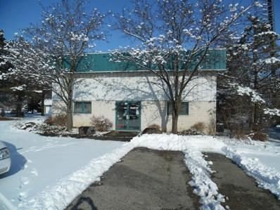 1814B  Route 12, Spring Grove, IL 60081 - #: 09841102