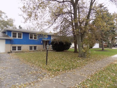 503 Dinah Road, Roselle, IL 60172 - #: 09841257
