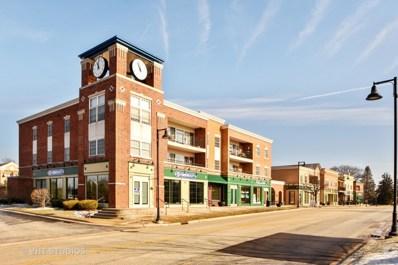 9 Old Frankfort Way UNIT 204, Frankfort, IL 60423 - MLS#: 09841914