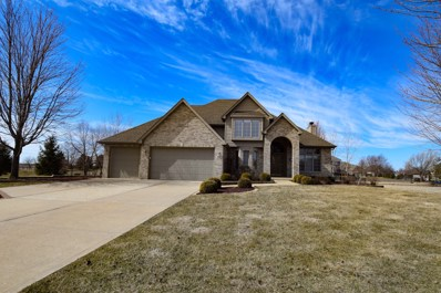 19042 S SADDLEBROOK Drive, Shorewood, IL 60404 - MLS#: 09842288