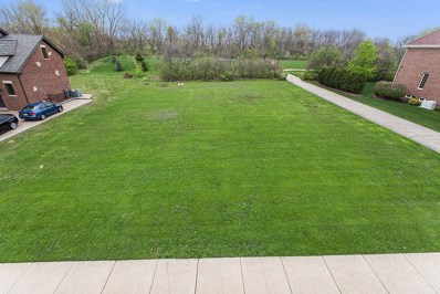 49 Deer Lane, Lemont, IL 60439 - #: 09843119