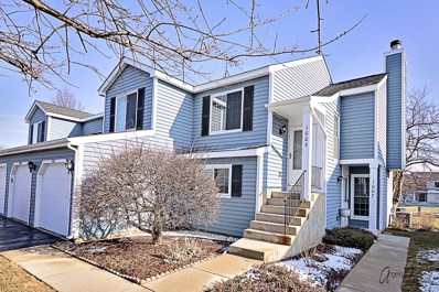 1005 Mallard Circle UNIT 0, Schaumburg, IL 60193 - MLS#: 09843178
