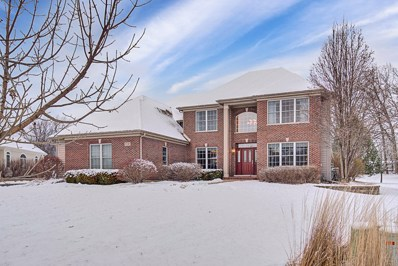 9730 Stonecastle Lane, Lakewood, IL 60014 - MLS#: 09843350