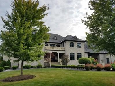 14011 W Erin Lane, Homer Glen, IL 60491 - MLS#: 09843852