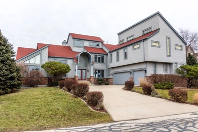 13225 Wood Duck Drive, Plainfield, IL 60585 - MLS#: 09844880