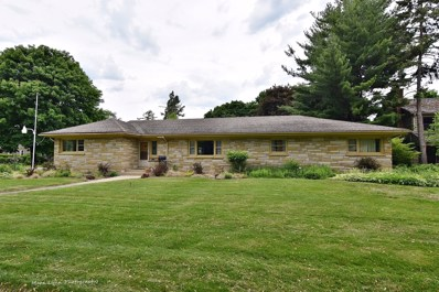 1219 W Downer Place, Aurora, IL 60506 - MLS#: 09844961