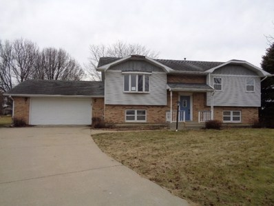 8065 Ashley Road, Morris, IL 60450 - #: 09845635