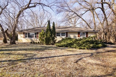 2060 Shermer Road, Northbrook, IL 60062 - #: 09846498