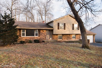 4714 Lake Dawnwood Drive, Johnsburg, IL 60051 - #: 09846810