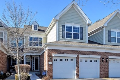1116 Pine Valley Court, Elgin, IL 60124 - MLS#: 09847003