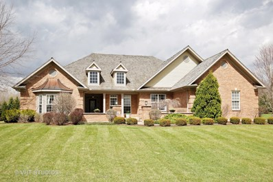 10630 Bull Valley Drive, Woodstock, IL 60098 - #: 09848676
