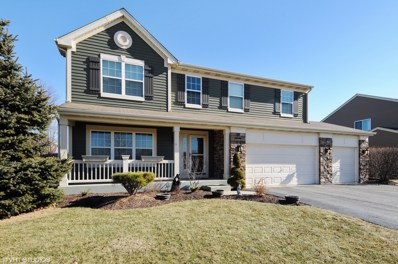 14743 MEADOW Lane, Plainfield, IL 60544 - MLS#: 09848728