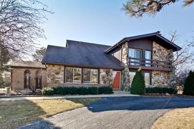 1558 Chickamauga Lane, Long Grove, IL 60047 - MLS#: 09848767