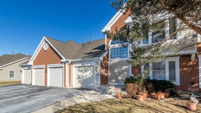 1881 Fox Run Drive UNIT D, Elk Grove Village, IL 60007 - MLS#: 09848863