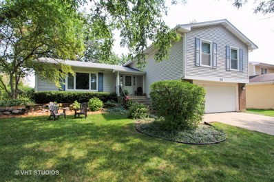 28 Somerset Lane, Buffalo Grove, IL 60089 - MLS#: 09849486