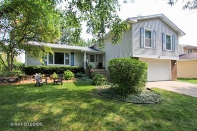 28 Somerset Lane, Buffalo Grove, IL 60089 - #: 09849486