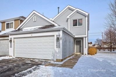 17 Andover Court, South Elgin, IL 60177 - #: 09849784