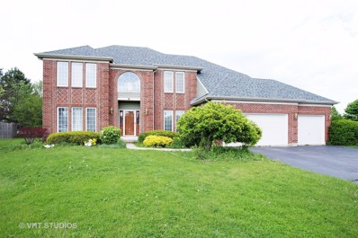 8 Tealwood Court, Algonquin, IL 60102 - #: 09850282