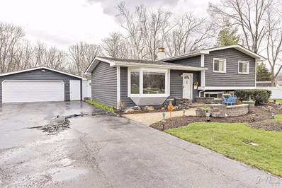 30315 Oak Grove Avenue, Libertyville, IL 60048 - #: 09850401